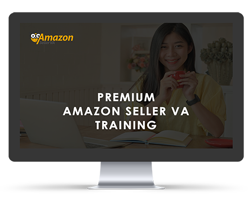 Lifetime Access to the  Premium Amazon Seller VA Training (PLUS Yearly Updates)
